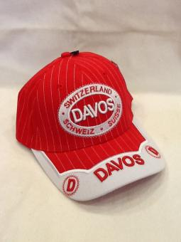 Sonnenhut Davos Rot